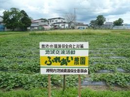 ふれあい農園.JPG