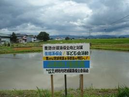 ふれあい養鯉場.JPG