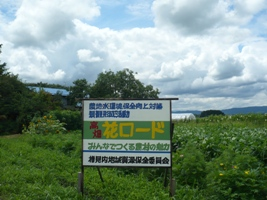 花ロード.JPG