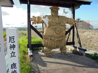 DSC01635_hujimaki_400.JPG